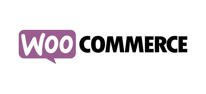 WooCommerce Instagram wordpress plugin nulled free download